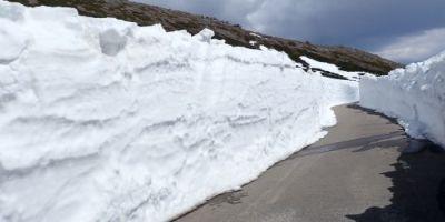雪の回廊を見るなら大黒岳下辺りを散策